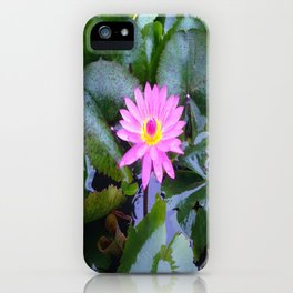 Sun-kissed Lotus blooms and awakens up on a mountain in Vietnam iPhone Case