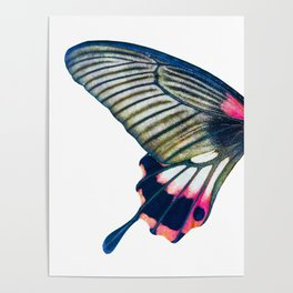 Butterfly left wing - find the right wing in my store :) Poster