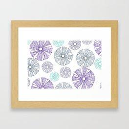 white sea urchin Framed Art Print