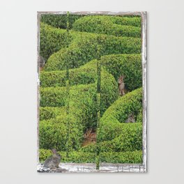 Garden Labrynth Canvas Print