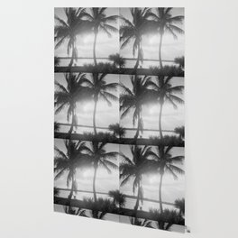 Black and White Florida Palm Trees Photograph (1915) Wallpaper