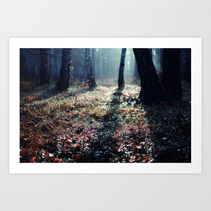 Forest floor art print by ewitsoe society6 for Floor prints