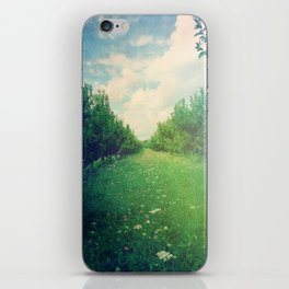 Apple Orchard in Spring iPhone Skin