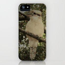 Kookaburra sits iPhone Case