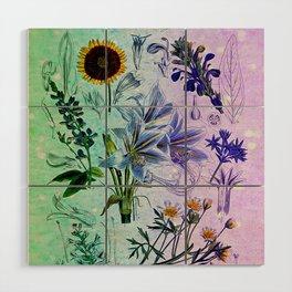 Botanical Study #2, Vintage Botanical Illustration Collage Art Wood Wall Art