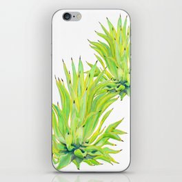 Sunlit Octopus Agave iPhone Skin