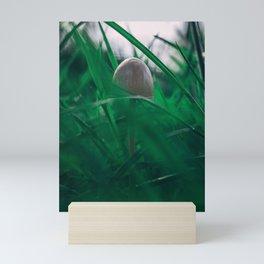Shroom in the Morning Mini Art Print