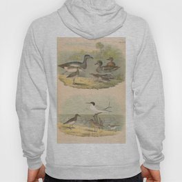 1574 Vis a Vis Accidents in Quadrille dancing Hoody