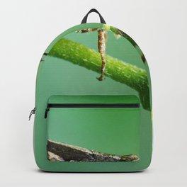 MACRO PHOTOGRAPHY OF GRASS HOPPER Backpack