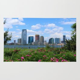 View Onto Jersey City Rug