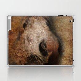 Vintage portrait of the horse Laptop & iPad Skin