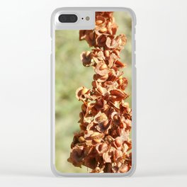 Natural wonder Clear iPhone Case