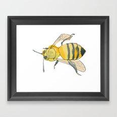 bee no. 2x2 Framed Art Print