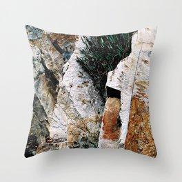 Rock Face Near Windamere Dam Throw Pillow
