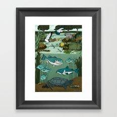 Ecosystem: Pond Framed Art Print