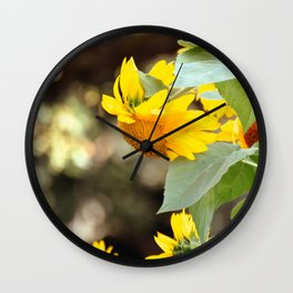 SUNFLOWER IN THE LATE AFTERNOON SUNLIGHT GLOW Wall Clock