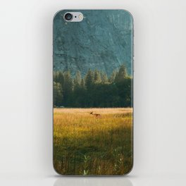 Meadow Sunset in Yosemite iPhone Skin