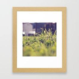 Grassy Things Framed Art Print