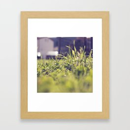 Grassy Things Framed Art Print