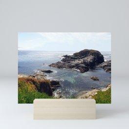 California Coast 03 Mini Art Print
