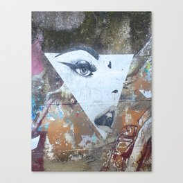 Not Every Succesful Woman is in the Illuminati Canvas Print
