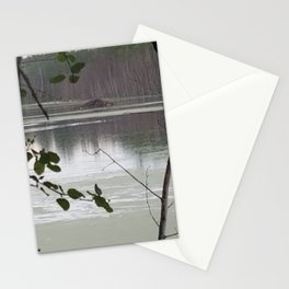 Looking out to a beaver house Stationery Cards