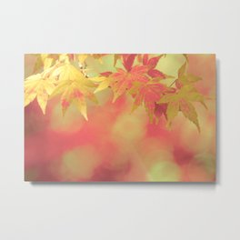 Dreamy Red Autumn Japanese Maple  Metal Print