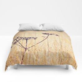 Somewhere Better Comforters