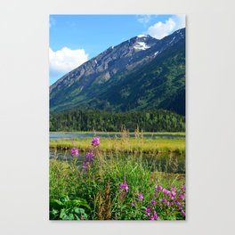July at Tern Lake - II Canvas Print