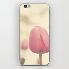 Spring dream iPhone & iPod Skin