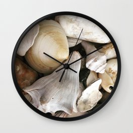 Coquillages Wall Clock
