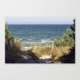 Sand Dune on the Isle of Ruegen Canvas Print