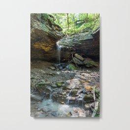Raccoon Creek State Park - Mineral Springs Metal Print