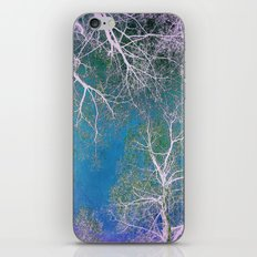The Fairy Forest  iPhone & iPod Skin