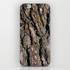 Tree Bark 1 iPhone & iPod Skin