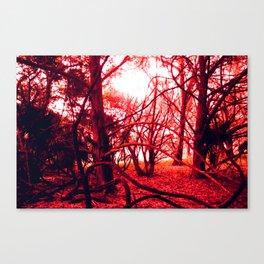 guana Canvas Print