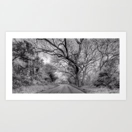 Hairy Man Road - Brushy Creek- Round Rock, Texas - Black and White Art Print