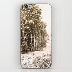 Winter Roadside iPhone & iPod Skin