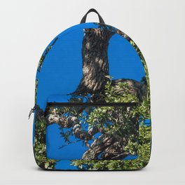 Magnificent Oak Backpack