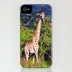 Giraffe Slim Case iPhone (4, 4s)