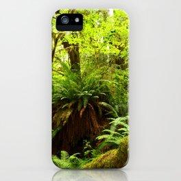 Rainforest Ferns iPhone Case