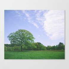 maudslay Canvas Print
