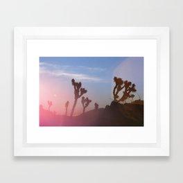 jtree vi Framed Art Print