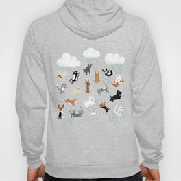 Raining Cats & Dogs Hoody