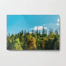 Carpathian Mountains Landscape, Summer Landscape, Transylvania Mountains, Forests Of Romania Metal Print