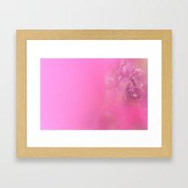 Japanese inspiration - Malva Alcea Framed Art Print