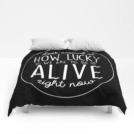 Look Around, Look Around Comforters