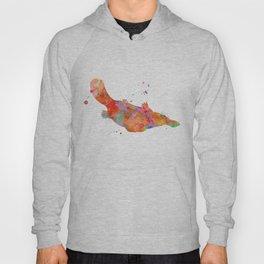 Colorful Platypus Hoody