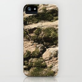 Tree bark iPhone Case