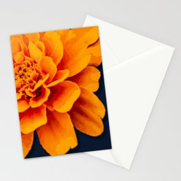 Marry Me Gold and Navy Marigold Stationery Cards